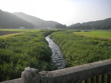 2015fujikawa02.JPG